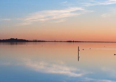 Maguelone - étang de l'Arnel
