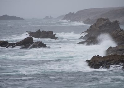 Quiberon - côte sauvage