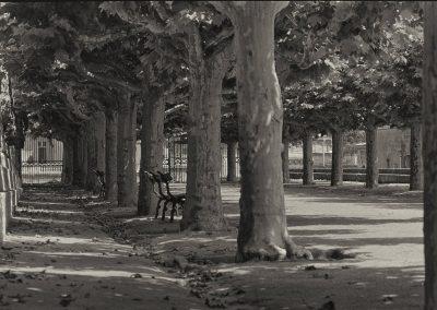 Montpellier - allée du jardin du Peyrou