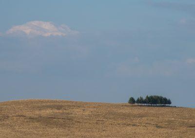 Grande draille du Languedoc
